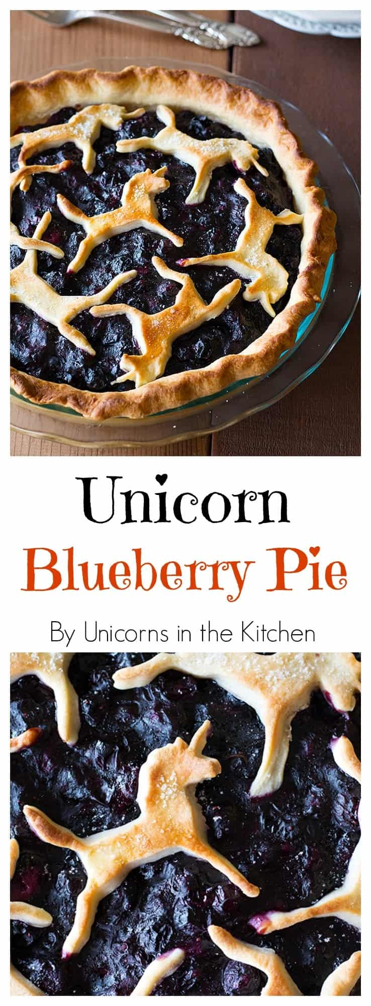 This is best ever unicorn blueberry pie, drip free and with a flaky crust! An extra step makes the filling so silky and nice!