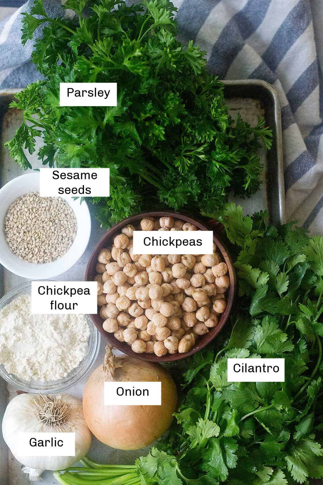 Falafel ingredients are chickpea, parsley, cilantro, onion, garlic, sesame seeds and chickpea flour.