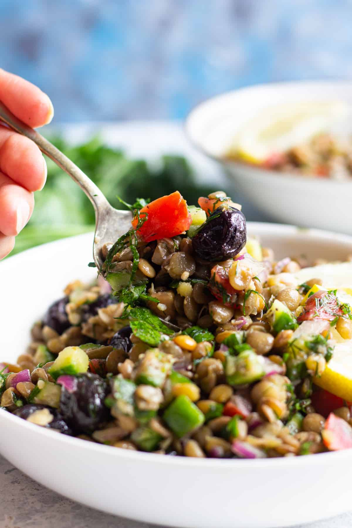 An easy cold salad made with lentils that you can have as a light lunch as well.